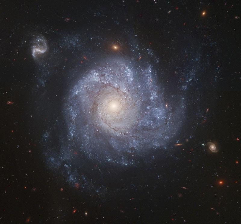 Кръгообразна Галактика NGC 1309