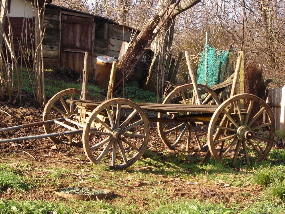 Селски бит