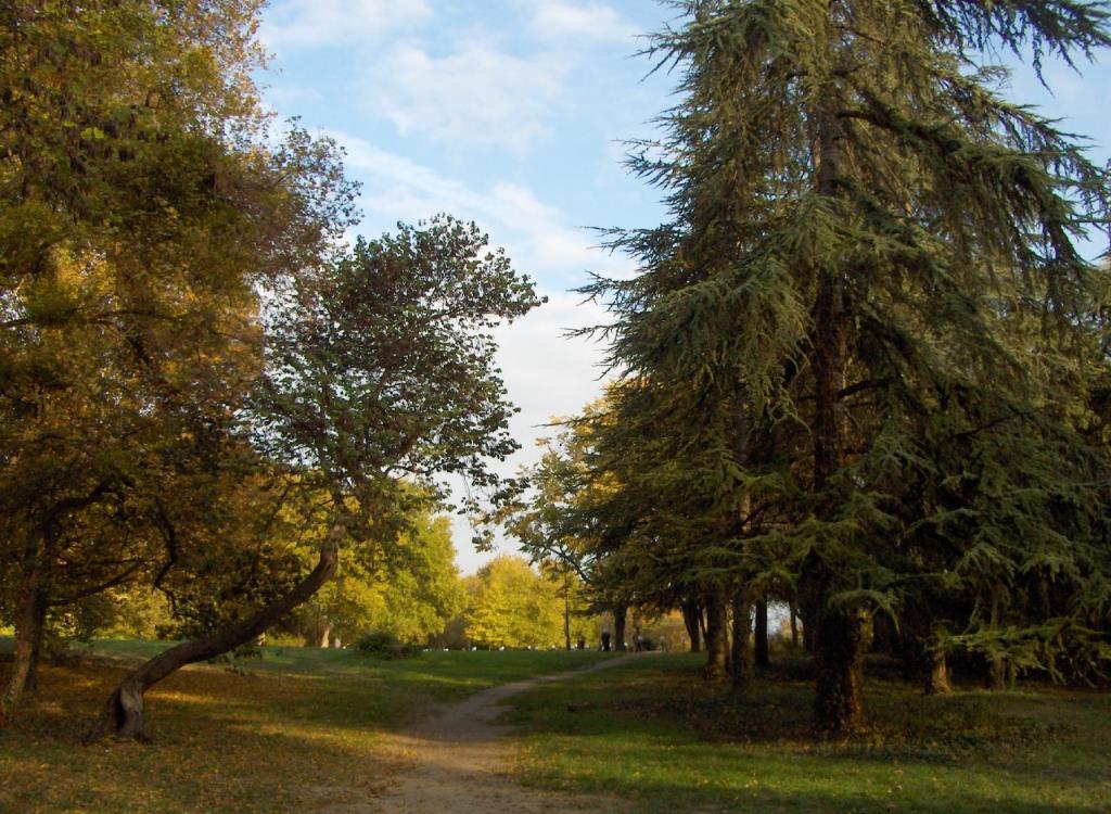 Есен във Варна