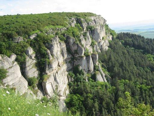 Поглед от платото