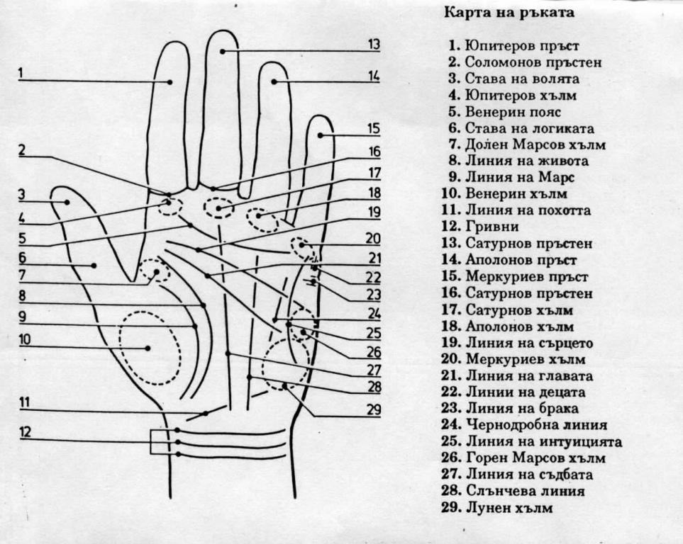Карта на ръката. Хиромантия