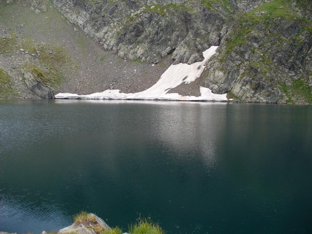 Козирог, ходещ по езерото