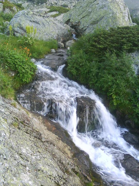 Водата и живота